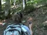 Hiking Around Mellau Austria