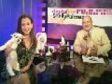 Digital Life With Shelly Palmer Episode 31 - July 6, 2010