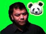 Dancing Panda Bear Getting Jiggy On Tom&apos S Show