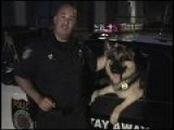 Detective Buck Police Dog & Officer Randy Show K9 Training