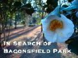 In Search Of Baconsfield Park