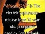 Joel Holmes - African Skies
