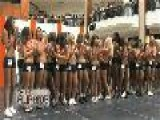 Miami Dolphins Cheerleaders Auditions