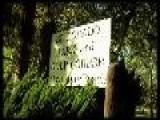 Tijuana Panthers Summer Fun Music Video