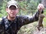 Awesome Squirrel Hunt