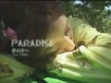 Tina Yuzuki&#39 S Paradise Adventure!