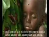 ZORRAS ADOLESCENTES Los K Tienen