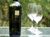 Virtual Wine Tasting Clip: Falanghin
