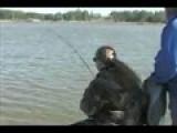 Strollin & Tonya Harding Catfishing