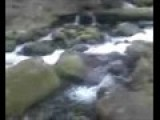 Eagle Creek 07