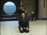 Preserving Samurai And Ninja