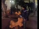 Sesso Con Animali -