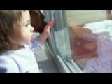 Baby Ruthie And The Sliding Glass Door