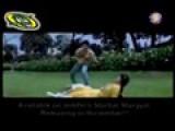 Ab Teer Chalen-YNS Beat Up Amir Khan