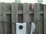 Aisoft Gun Shooting Black Cherry Can