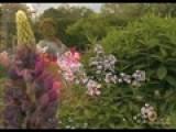 Jose&#39 S Garden