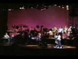 I Am The Walrus - Frank Zappa