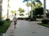 Crazy Bird -- Cabo San Lucas 2009