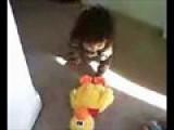Sean Strangling A Duck