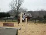 Jumping Maggie