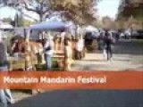 Mountain Mandarin Festival