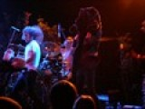 Horse The Band And The Dancing Bear