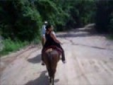 Riding Horses To El Eden