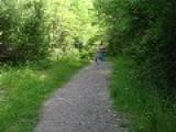Samson And Samantha Hiking