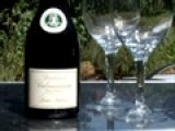 Virtual Wine Tasting Clip: Domaine