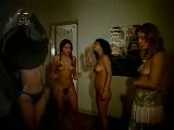 Various Nude Girls, Night Of The Perverts 1