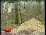 2006 Camara-oculta-foso-en-el-bosque