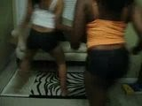 Shake That Monkey - Dime Divas - Twerking