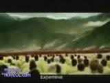Big Ad Funny Video Holylol.com