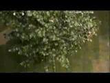 Katie Melua Nine Million Bicycles