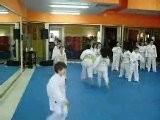 Carlo Stanco Gioco Ginnastica Arte Marziale Taekwondo ITF
