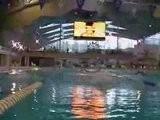 NSW Swimming Duel Meet Grand Final Team