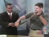Quem Gosta De Cobra Tem Medo De Perereca Snake Or Frog?