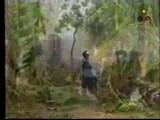 Tamil Eelam Song ... Nanchu Kaluthile