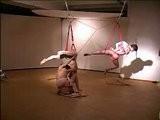 Dasniya Sommer - Shibari Suspensions