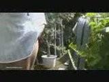 Denise Milani - In The Garden