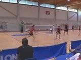 Match Nul Entre Le PL Troyes Et Plombières Badminton N3