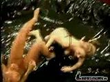 Veronica Zemanova And Sydney Moon - Oil Wrestling 2