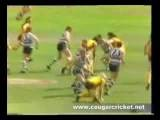 1989 VFL Grand Final: Hawthorn V Geelong