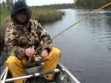 Fishing Brook Trout Canada - Jumping Trout For Flies