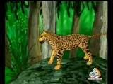 Habil And Kabil Full Bangla Cartoon .wmv