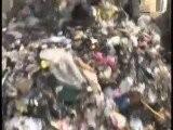 Matera' S Debris Removal LLC - Hauling In Edison, NJ