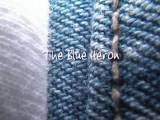 Two Day With Juliet - The Blue Heron