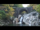 North Carolina Mountain Autumn Bliss 2008 - Part 1