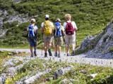Hiking In Stelvio National Park: Alpisella Valley