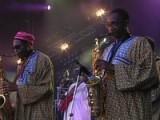 Orchestra Baobab - 'On Verra Ca' Live At Festival Du Bout Du Monde